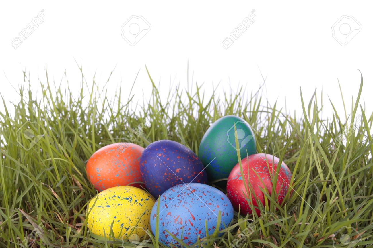 Colored easter  eggs on grass over white background Stock Photo - 8372061