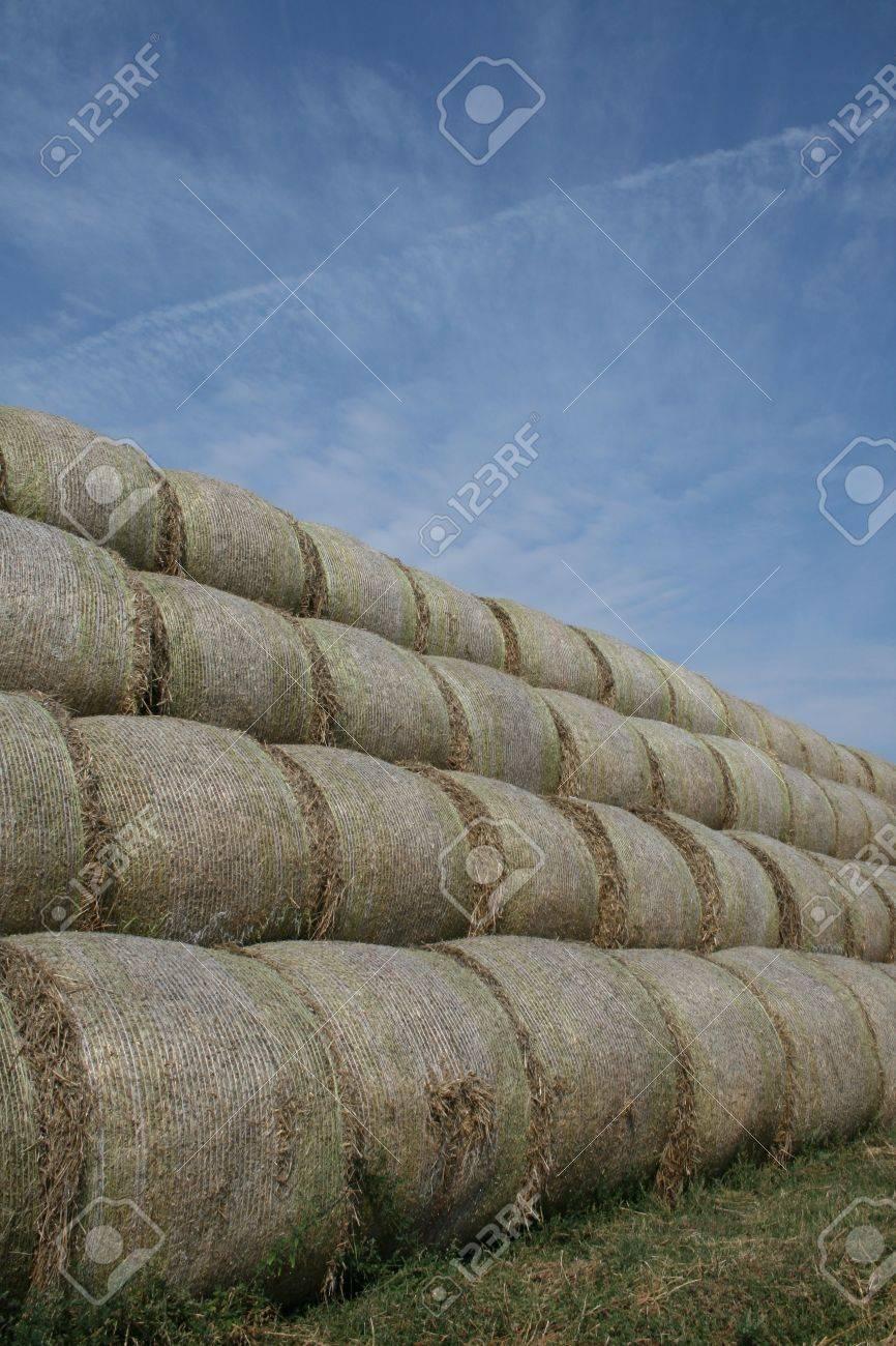 Bales of straw Stock Photo - 5582798