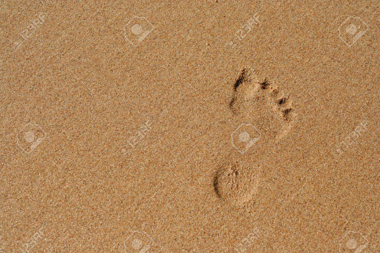 Bare footprint in smooth sand Stock Photo - 2704475