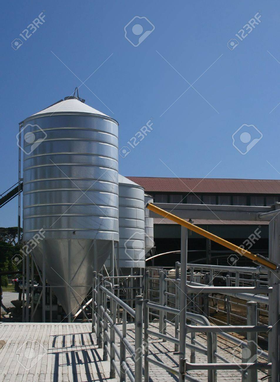Dairy farm holding pens and grain silo Stock Photo - 4173437