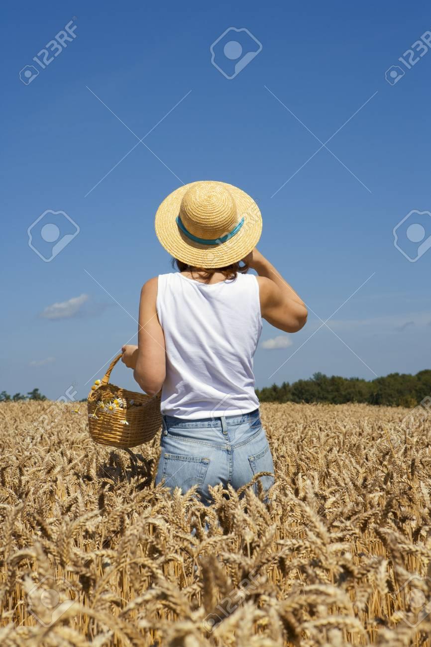 grain field Stock Photo - 5675957