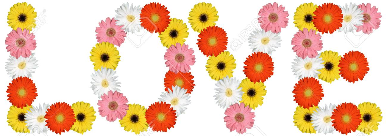 Liebe Von Blumen Blume Frühling Natur Auf Einem Weißen Hintergrund ...