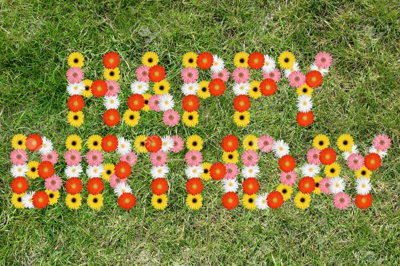 Happy Birthday With Flowers Flower Nature Meadow Grass Stock Photo