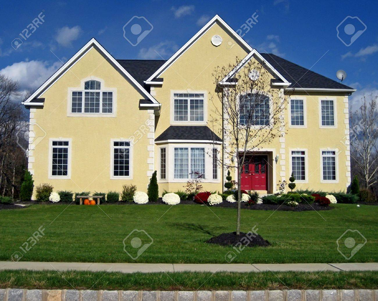 new, roomy executive style house with yellow facade and red door