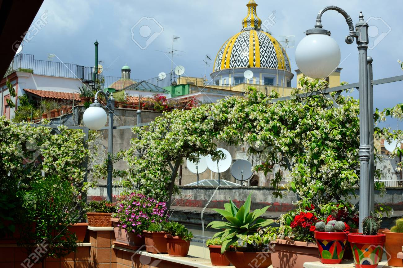 Plants On A Sunny Terrace In Summer Stock Photo Picture And Royalty Free Image Image 102049237