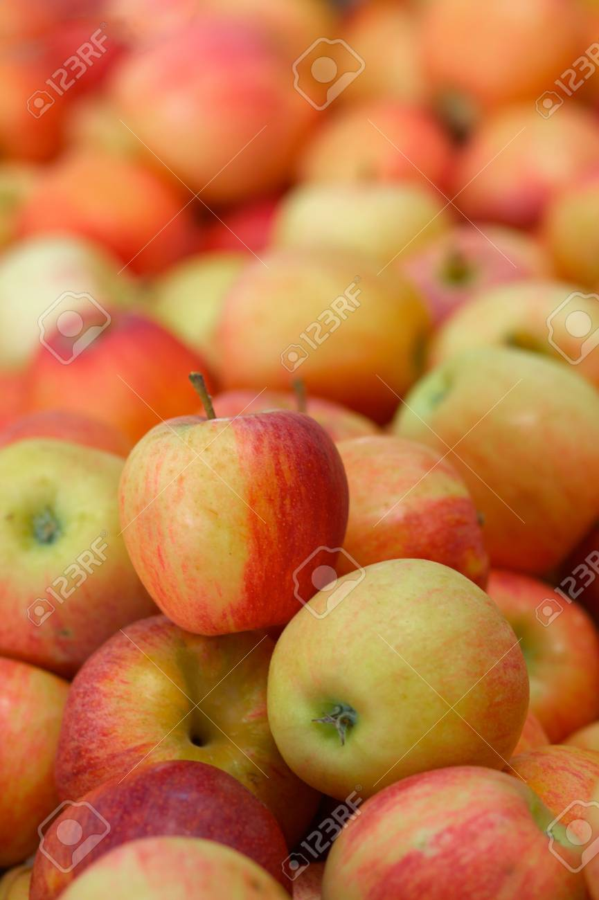 pile of red apples with soft focus background at a market - 5568253