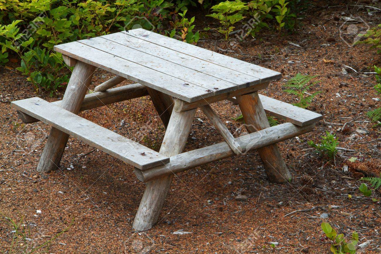 Small Childrenu0027s Wood Picnic Table With Green Foliage In Background Stock  Photo   7591876