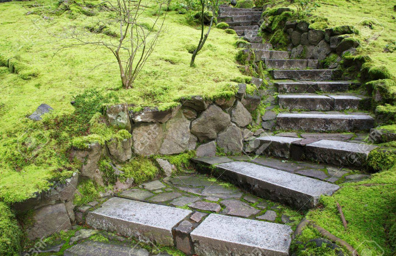 ascending curved garten steintreppe mit grünem moos grenzt