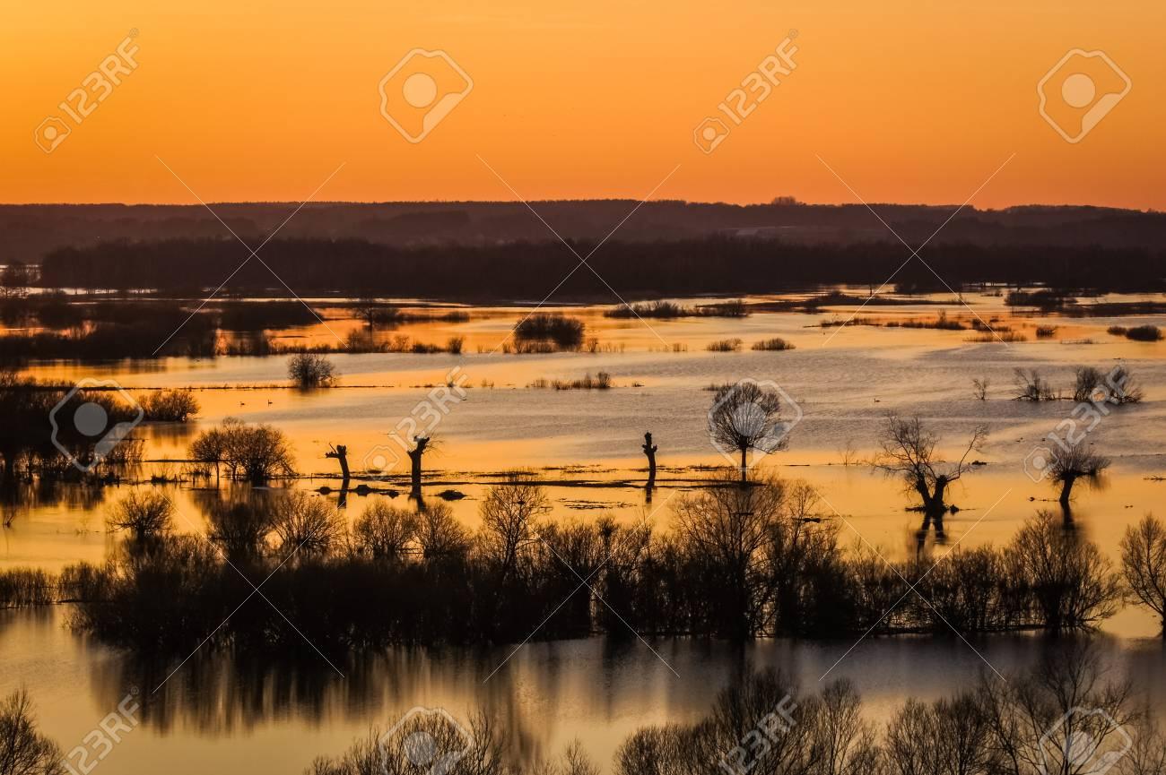 流域川 Narew ポドラシェ県、ポ...