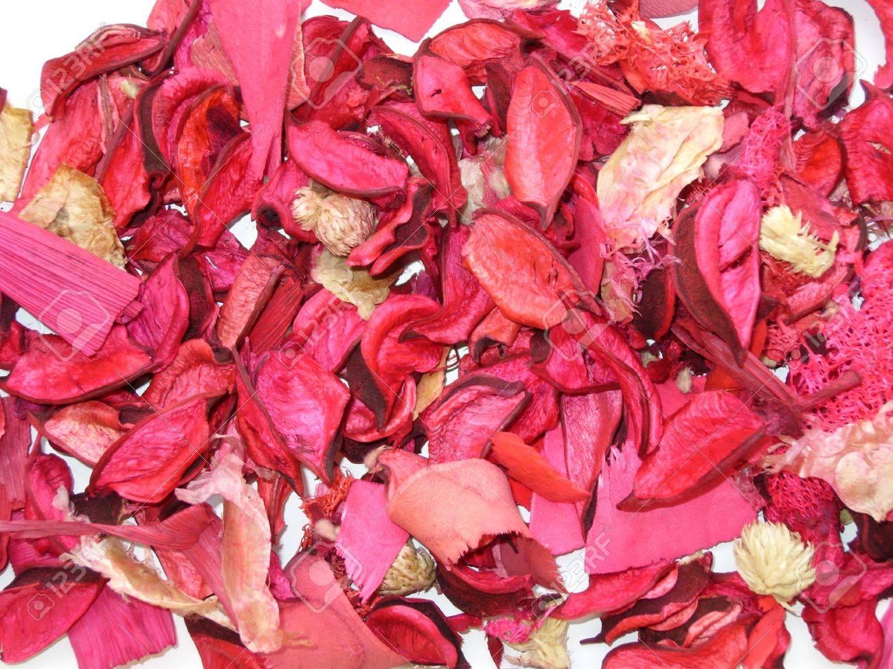 foto de archivo plantas secas de colores para la decoracin