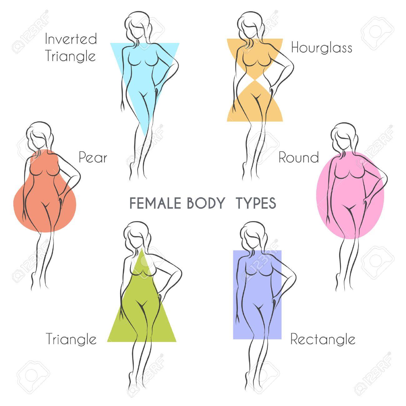 Female body types anatomy. Main woman figure shape, free font used. - 52521674