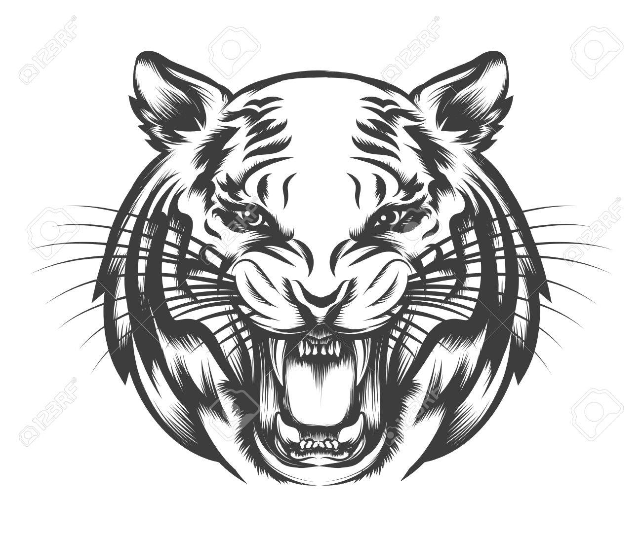 9dec535724ace Roaring Tiger head drawn in tattoo style isolated on white. Vector  illustration Stock Vector -