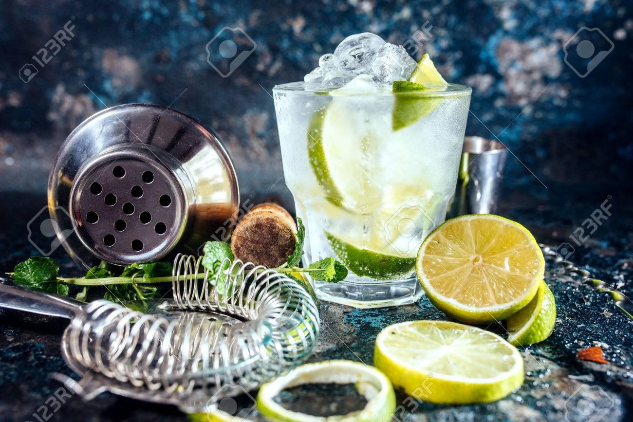 Gin Tonic Alkoholische Cocktail Mit Eis Und Minze. Cocktail Getränke ...