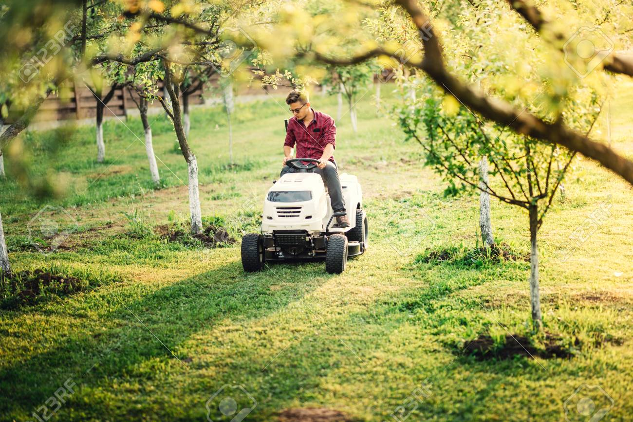 Gardening Works And Landscaping In Garden Worker Mowing And Stock Photo Picture And Royalty Free Image Image 79967196