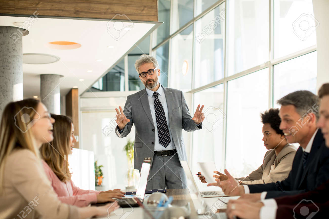 Mature businessman explaining strategy to group of multiethnic business people while working on new project in the office - 151073016