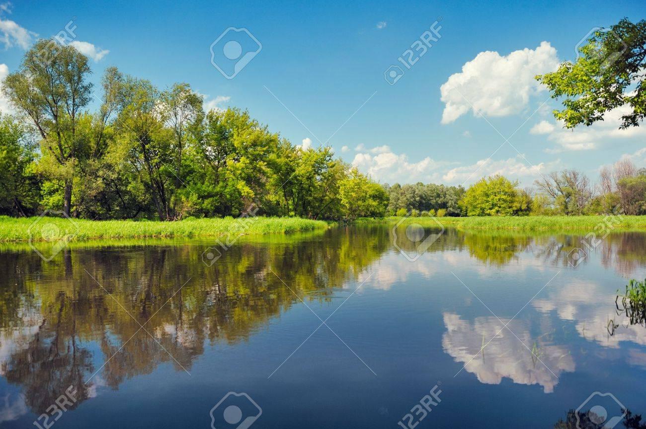 Flood waters wallpaper, Narew river, Poland Stock Photo - 9741735