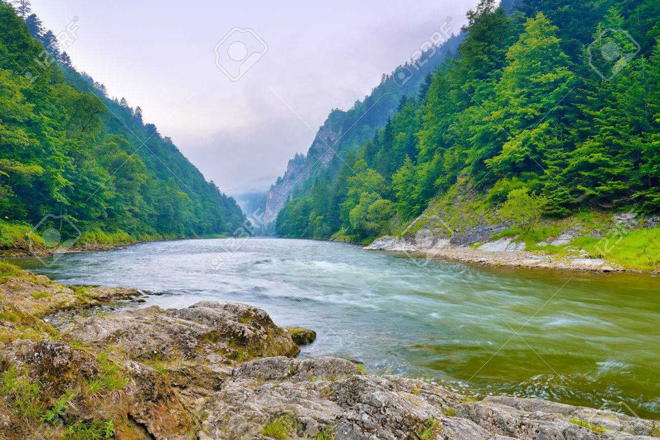 The gorge of mountain river in the morning  Dunajec, Pieniny Stock Photo - 20452658