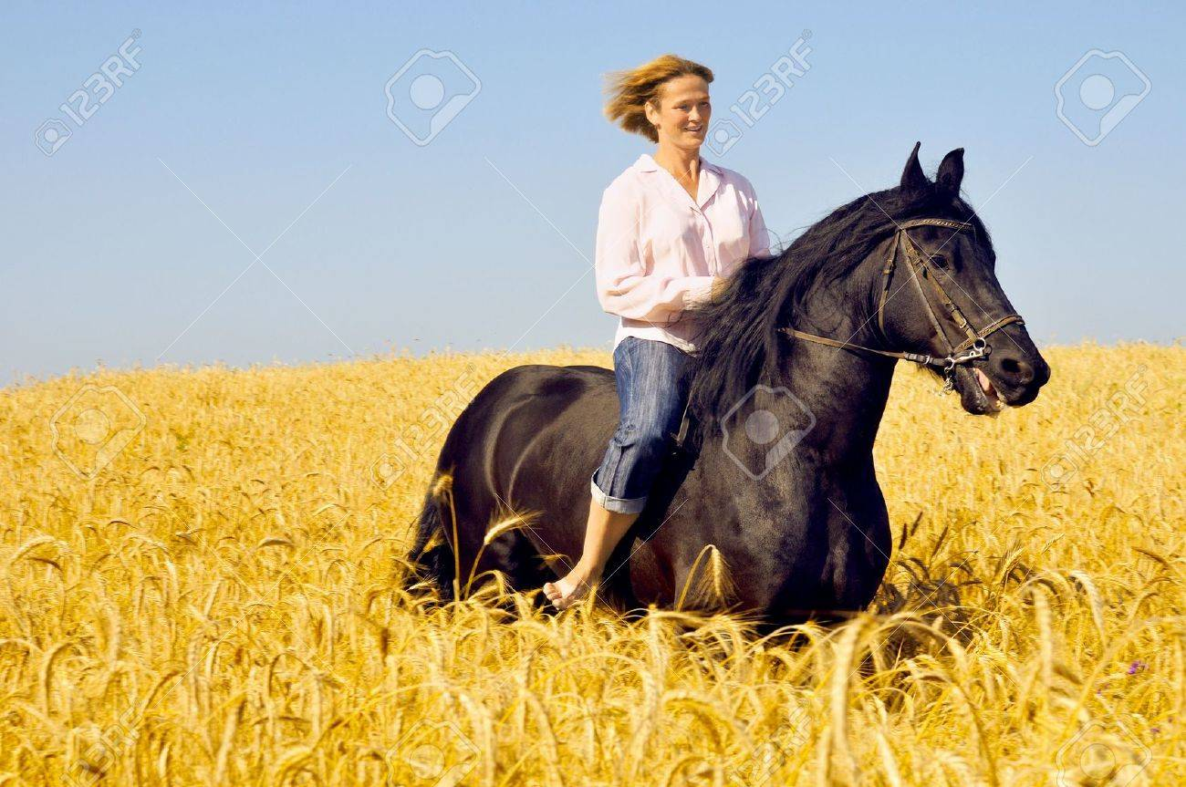 Beautiful Smiling Woman Rides A Pretty Horse In Field Stock Photo Picture And Royalty Free Image Image 5770005