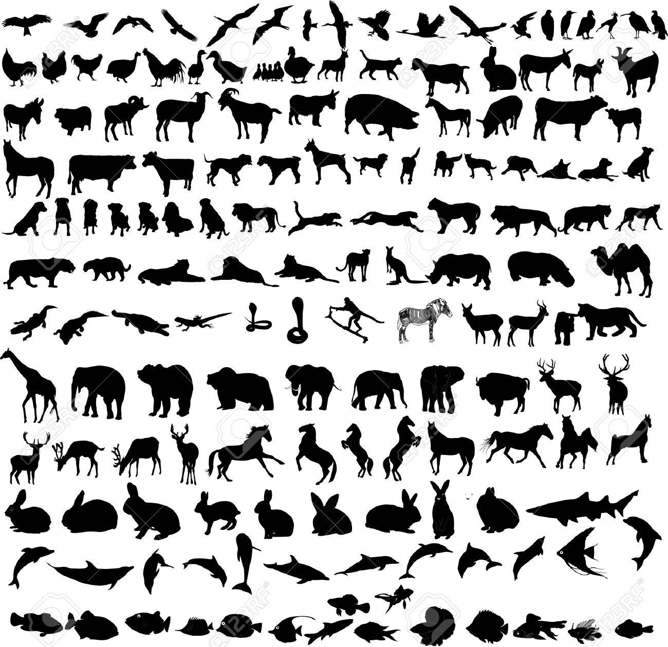 hundreds different animals Stock Vector - 6704895