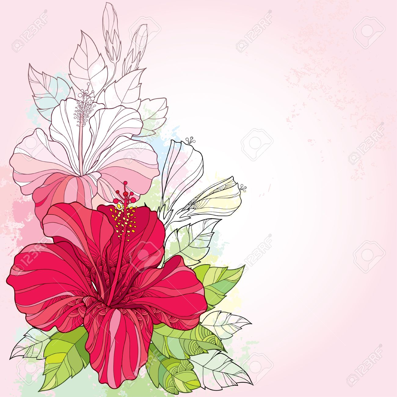 Bouquet With Chinese Hibiscus Or Rosa Sinensis And Leaves On The Pink Background