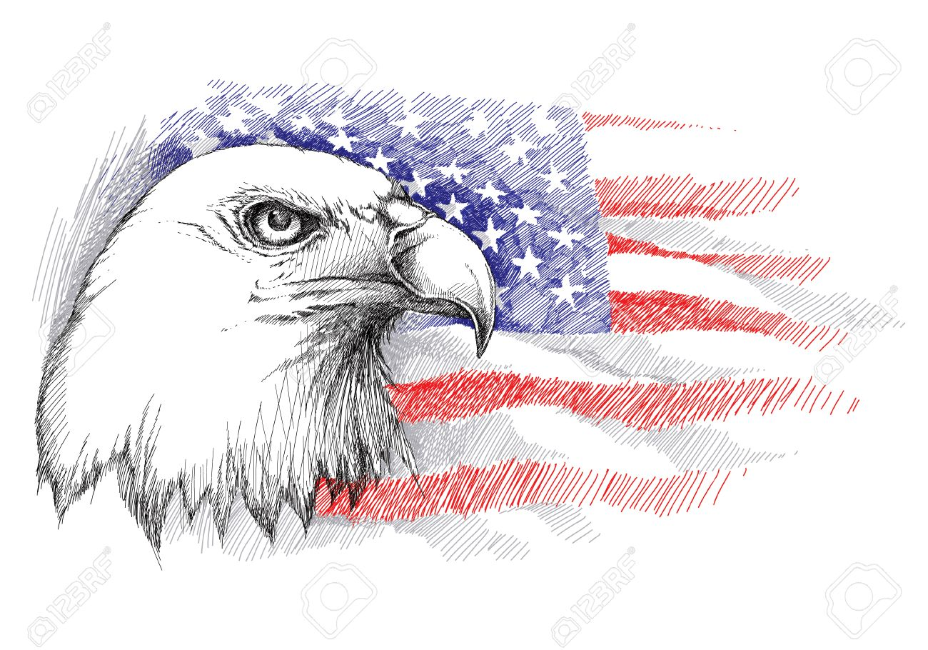sketch of bald eagle head on the background with american flag