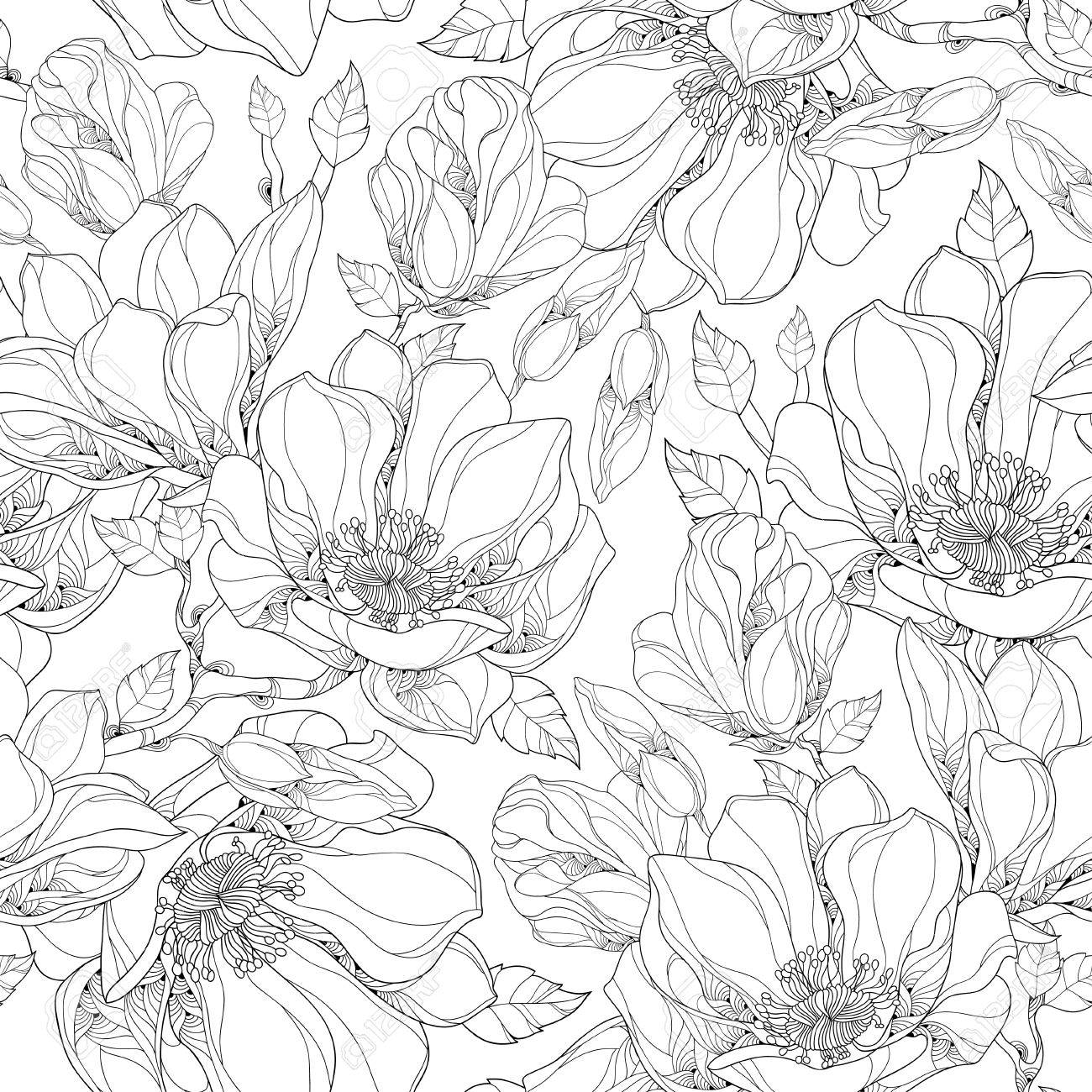 Vector Seamless Pattern With Outline Magnolia Flower Ornate