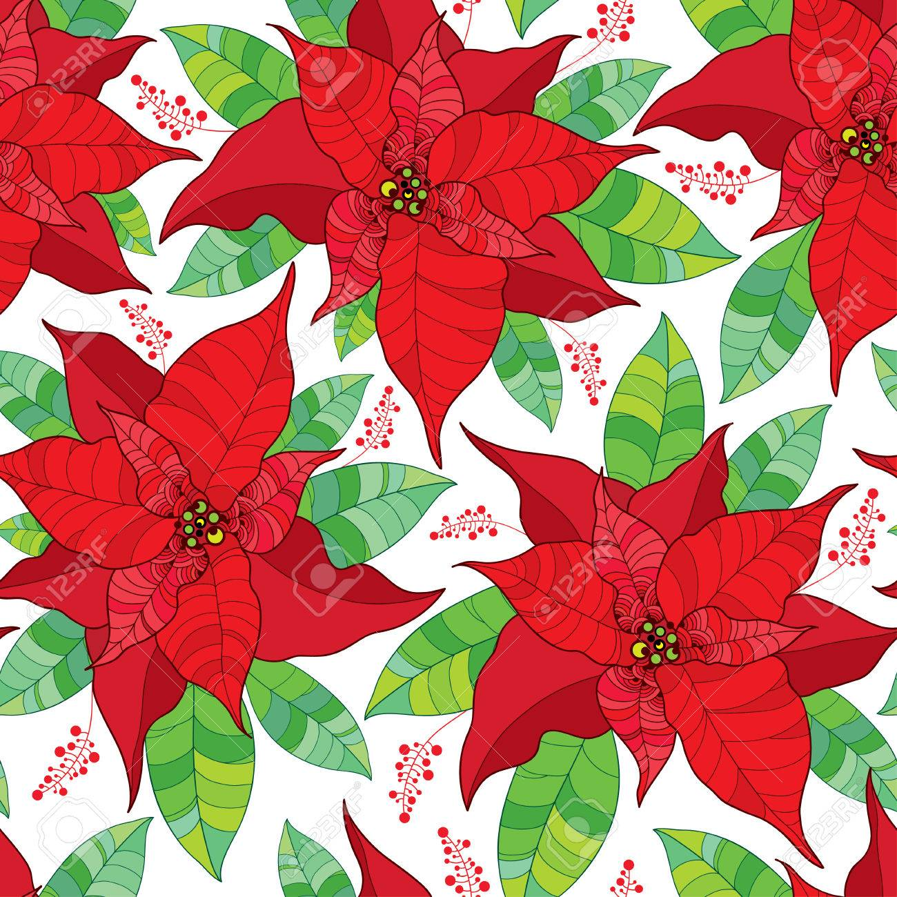 vector seamless pattern with contour poinsettia flower or christmas