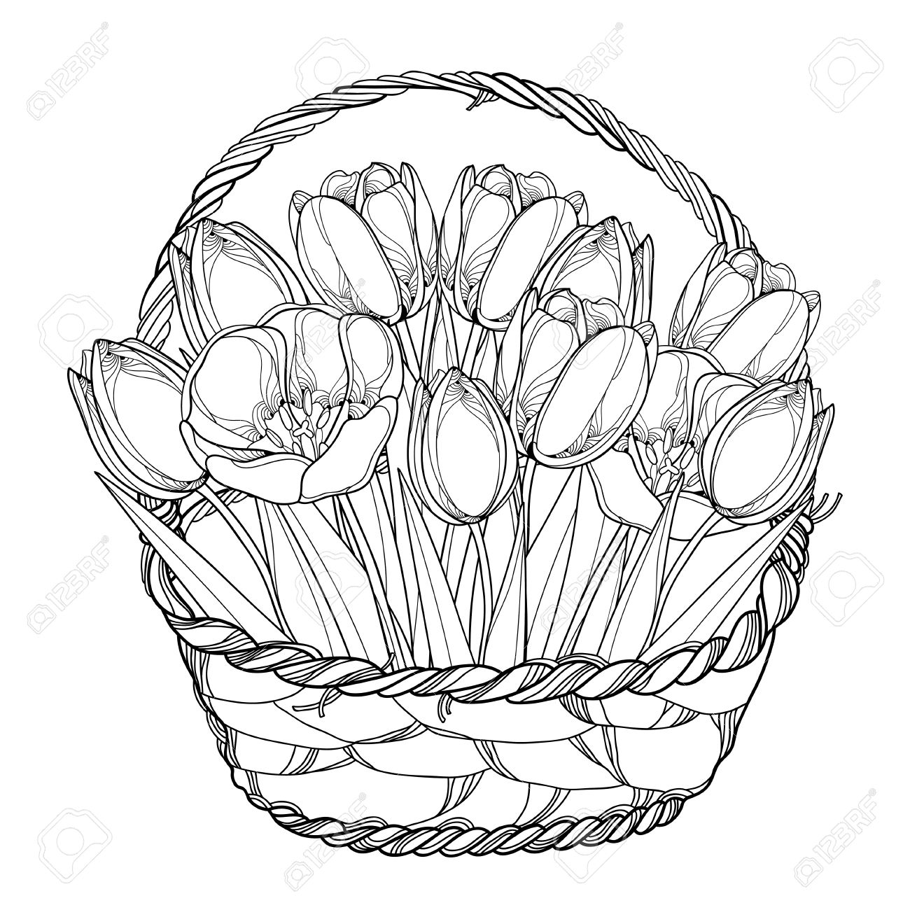 ベクトル アウトライン チューリップ花白で隔離バスケット ブーケ春の