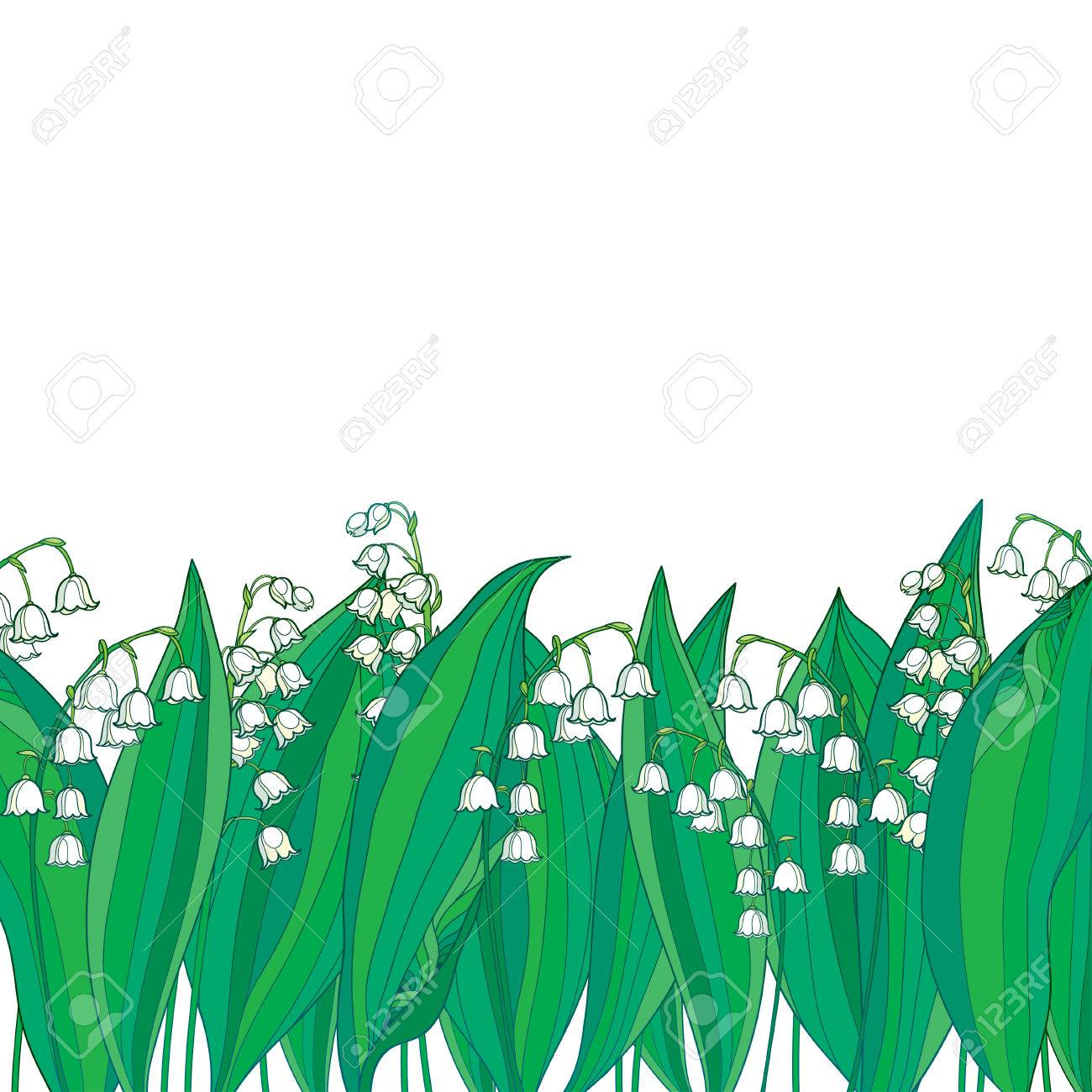 Border Met Omtrek Witte Lily Of The Valley Of Convallaria Bloem En