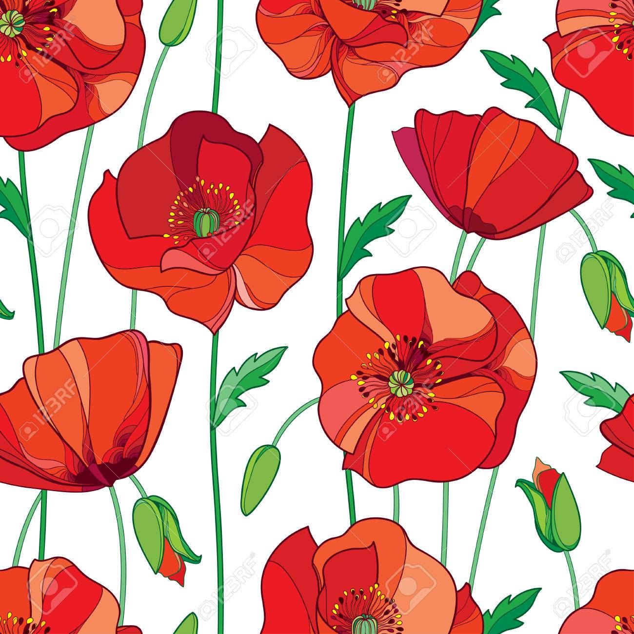 Seamless Pattern With Outline Red Poppy Flower Bud And Green