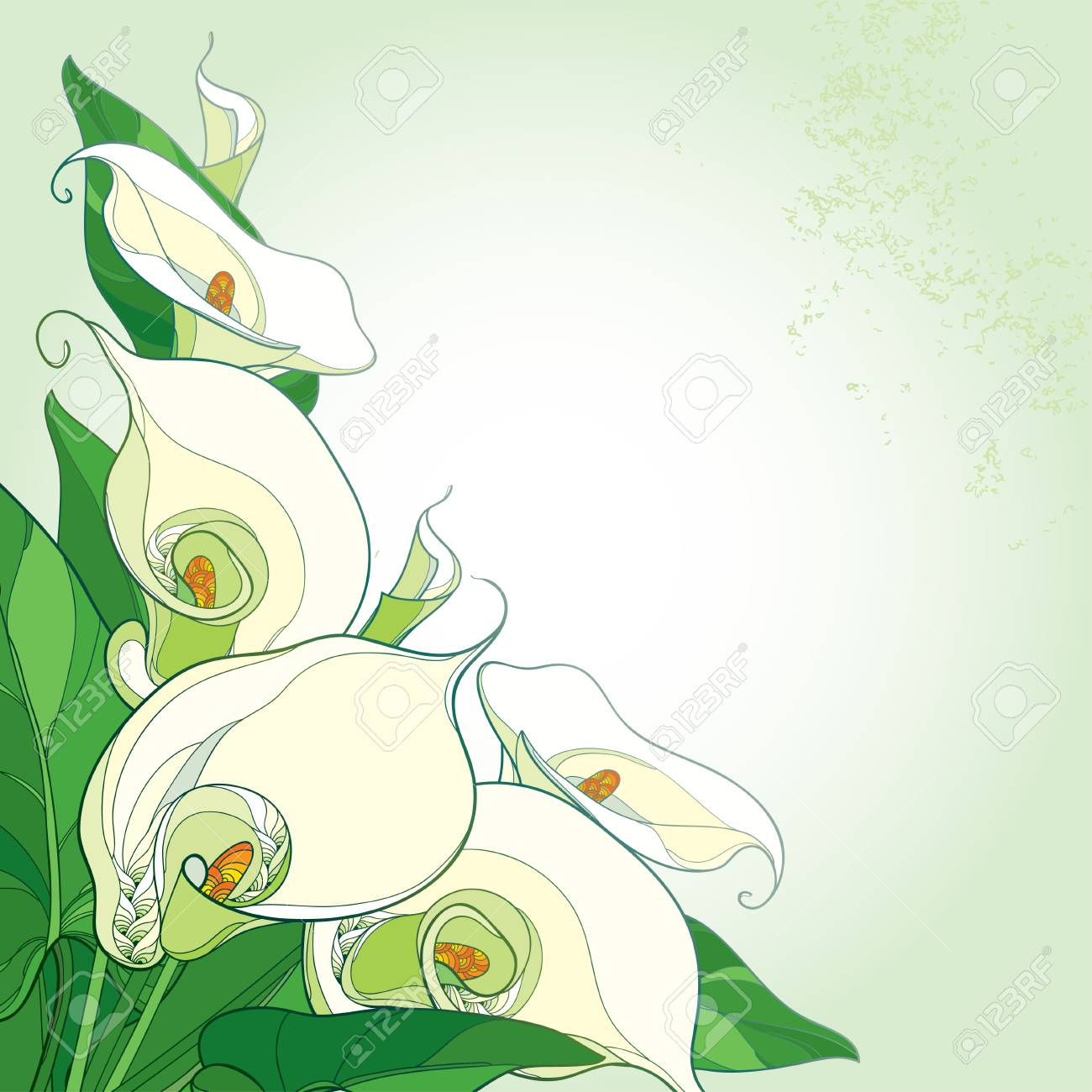 Bouquet with calla lily flower or zantedeschia on the pastel bouquet with calla lily flower or zantedeschia on the pastel background corner composition in contour izmirmasajfo