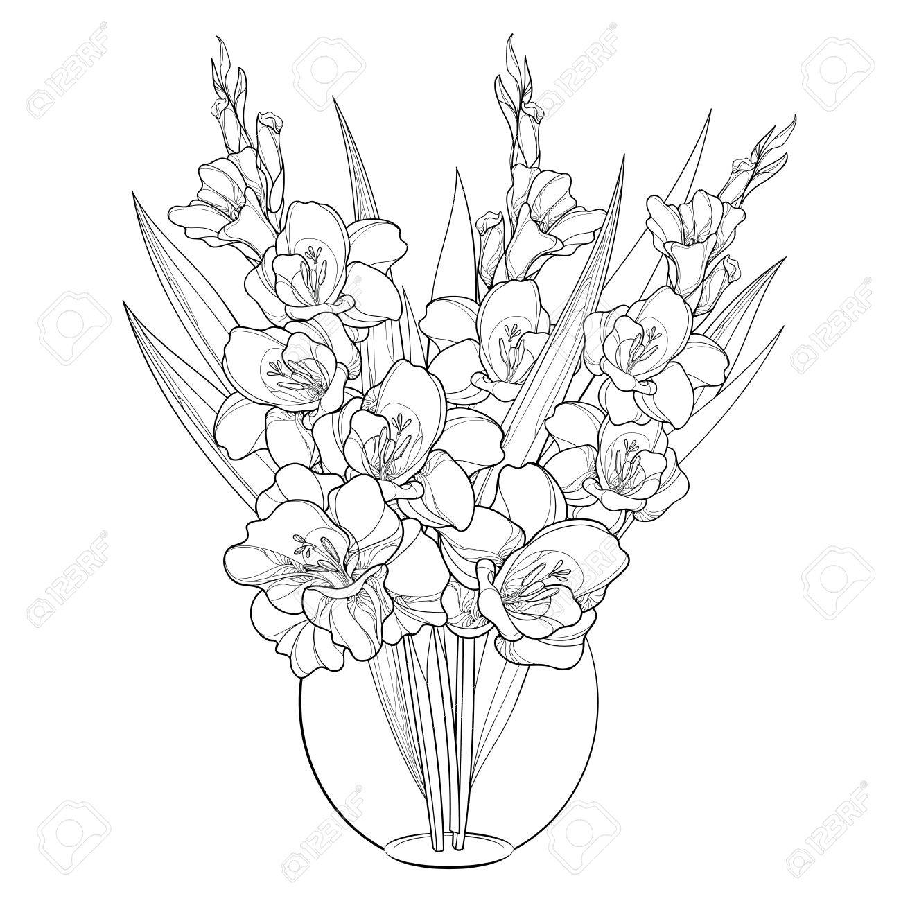 225 & Bouquet with Gladiolus or sword lily in vase. Flower bud and..