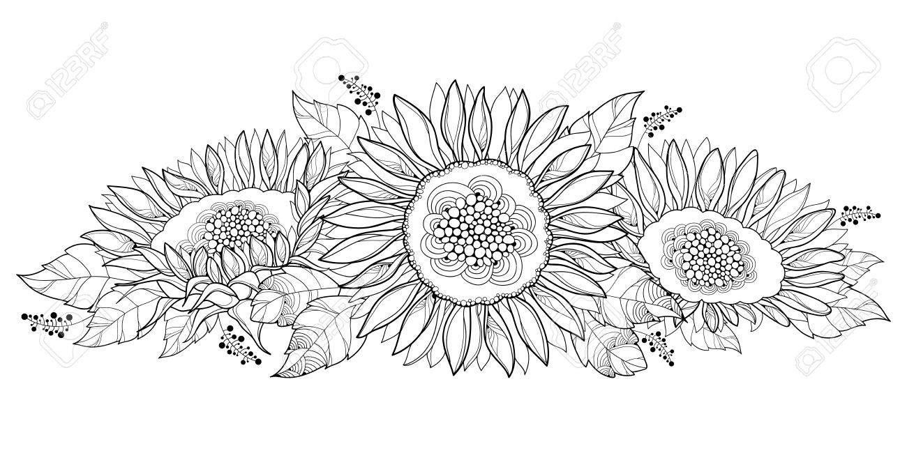 Kleurplaten Zonnebloemen.Samenstelling Met Overzichts Open Die Zonnebloem Of Helianthus Bloem