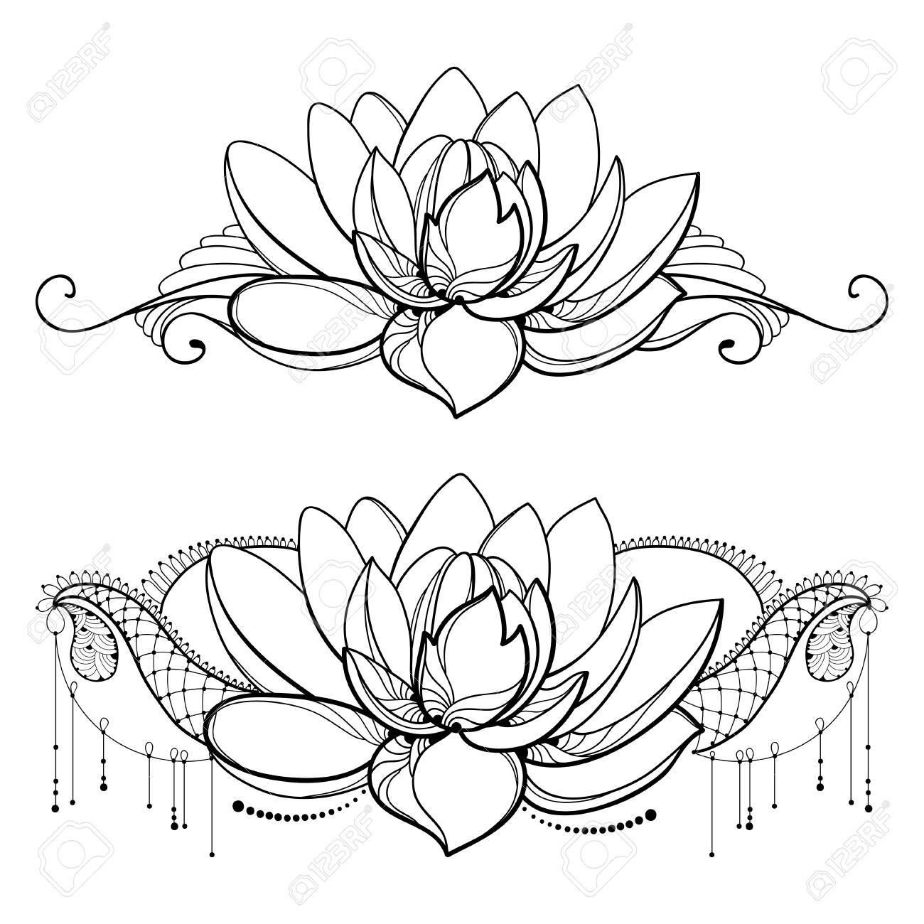 Dessin Avec Contour Fleur De Lotus Dentelle Décorative Et Tourbillons En Noir Isolé Sur Fond Blanc Composition Horizontale Florale Avec Lotus Fleuri