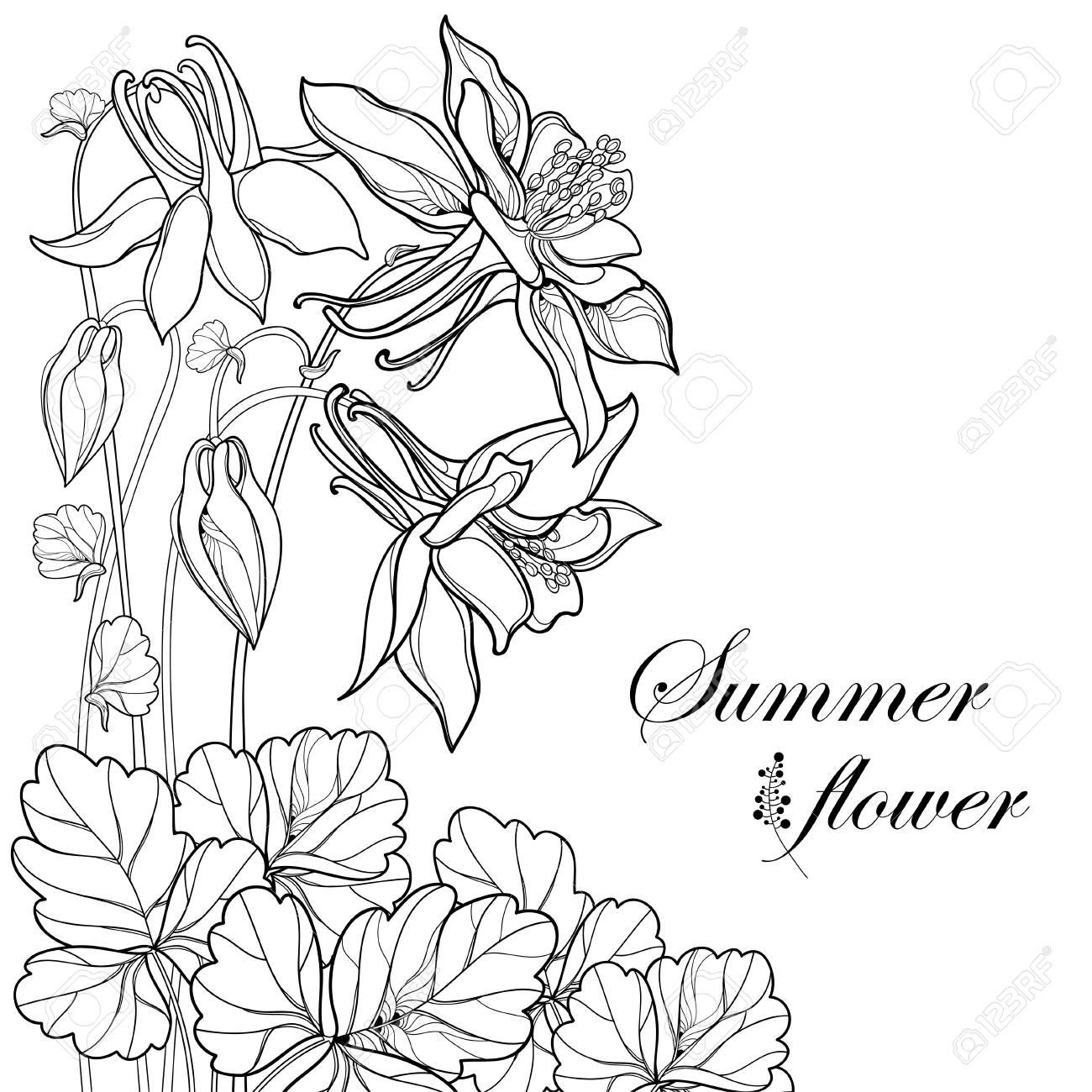 Ramo De Flores Diseño Para Colorear Libro. Ilustraciones Vectoriales ...