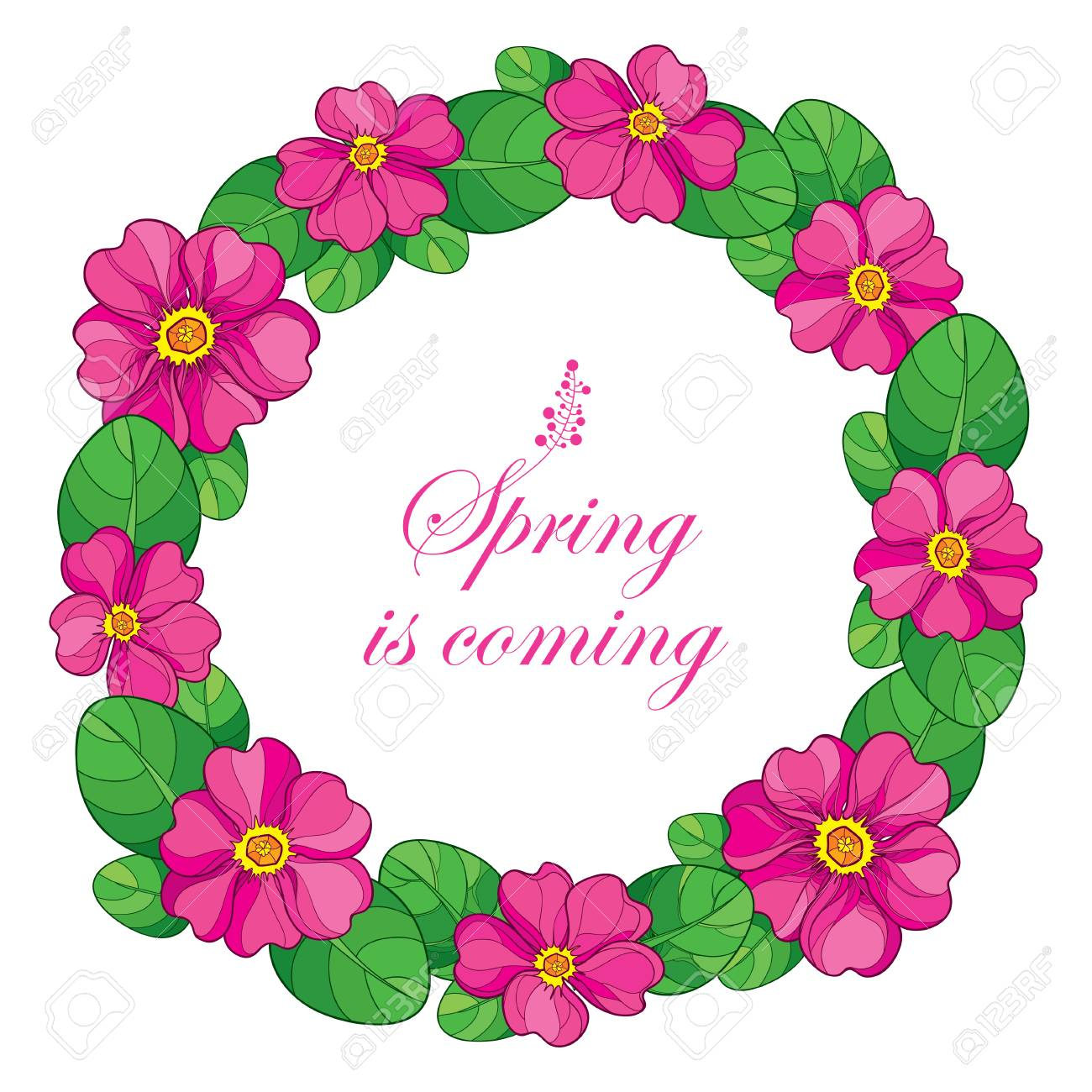 Round wreath with outline pink primula or primrose flower and round wreath with outline pink primula or primrose flower and green leaves on white background mightylinksfo