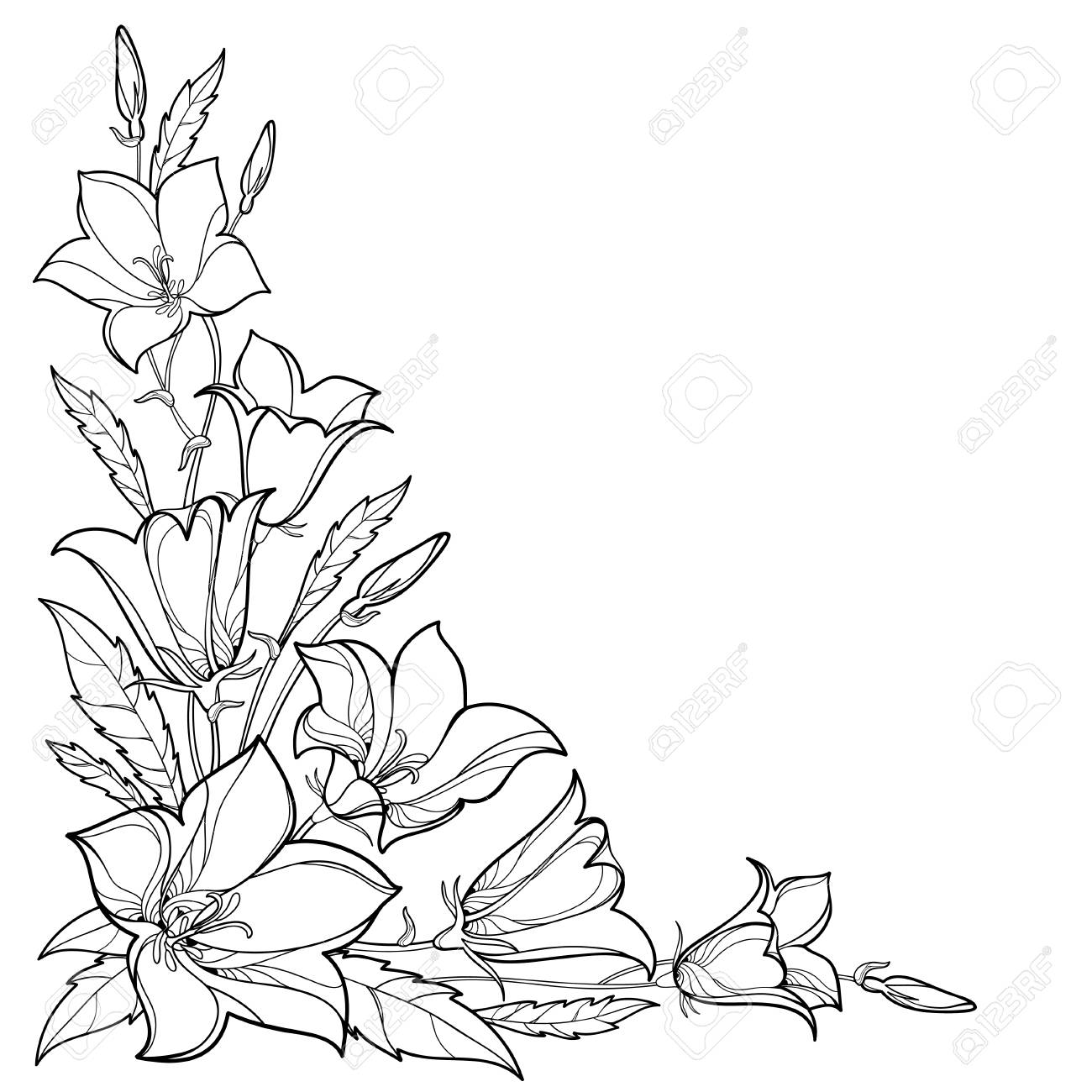 Corner bouquet with outline flower, leaf and bud in black isolated..