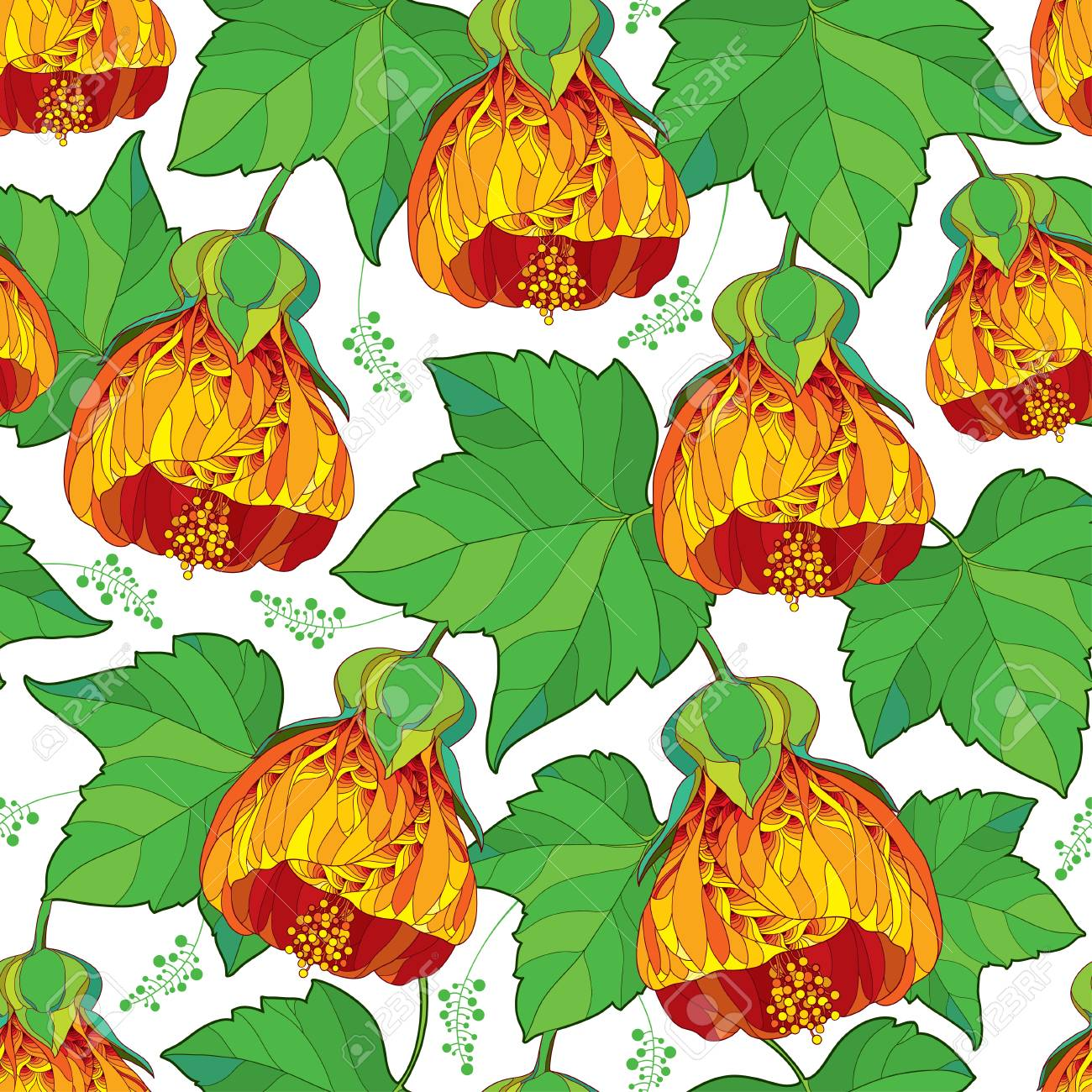 Seamless pattern with outline orange Abutilon or Indian mallow flower and ornate green leaf on the white background. Floral background in contour style with tropic Abutilon for summer design. - 104487940