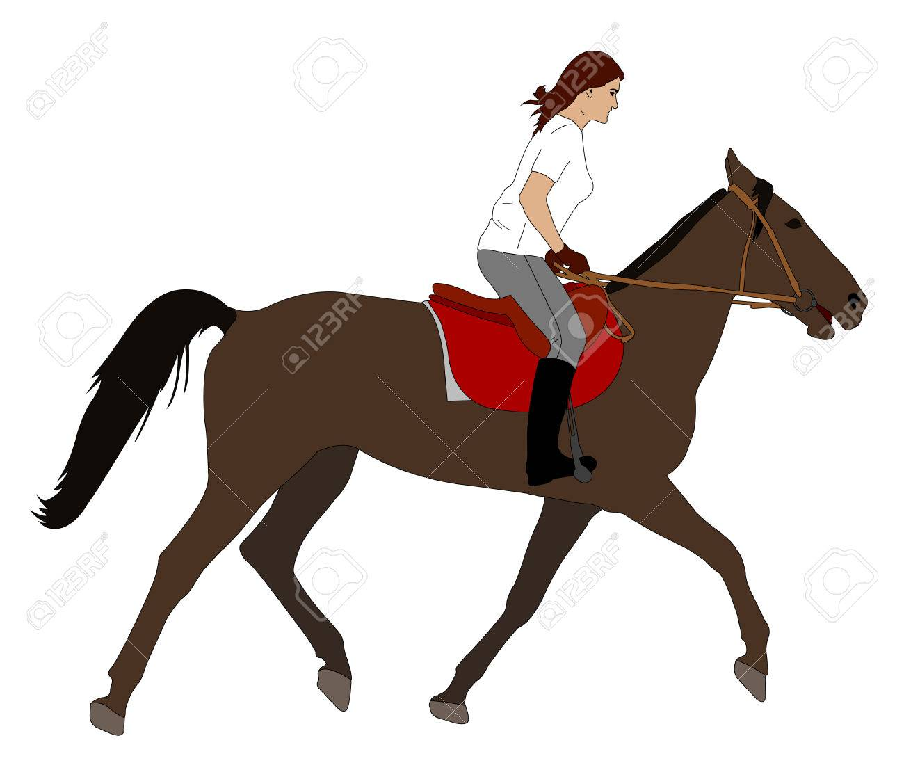 Woman Riding Horse Illustration Vector Royalty Free Cliparts Vectors And Stock Illustration Image 66584016