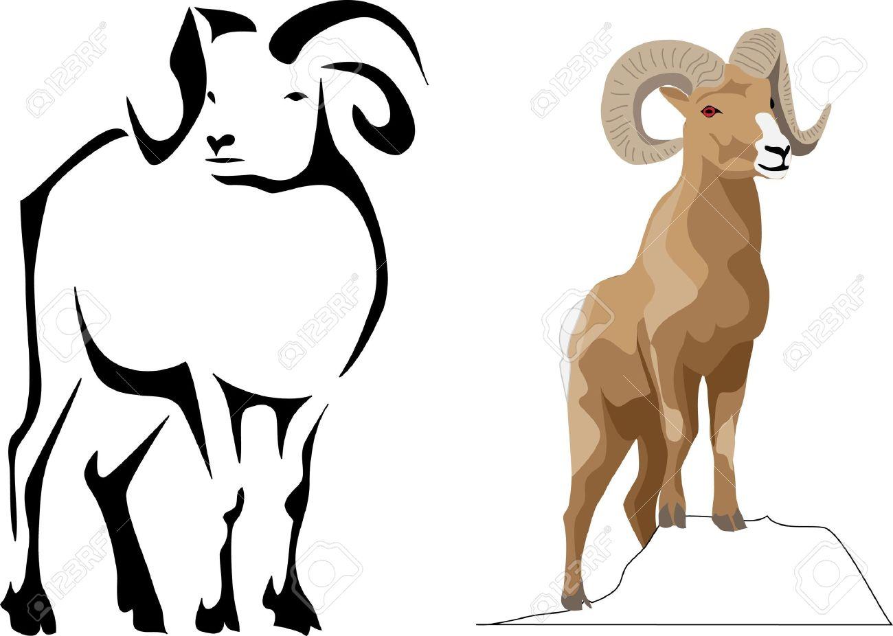 bighorn sheep Stock Vector - 10771482