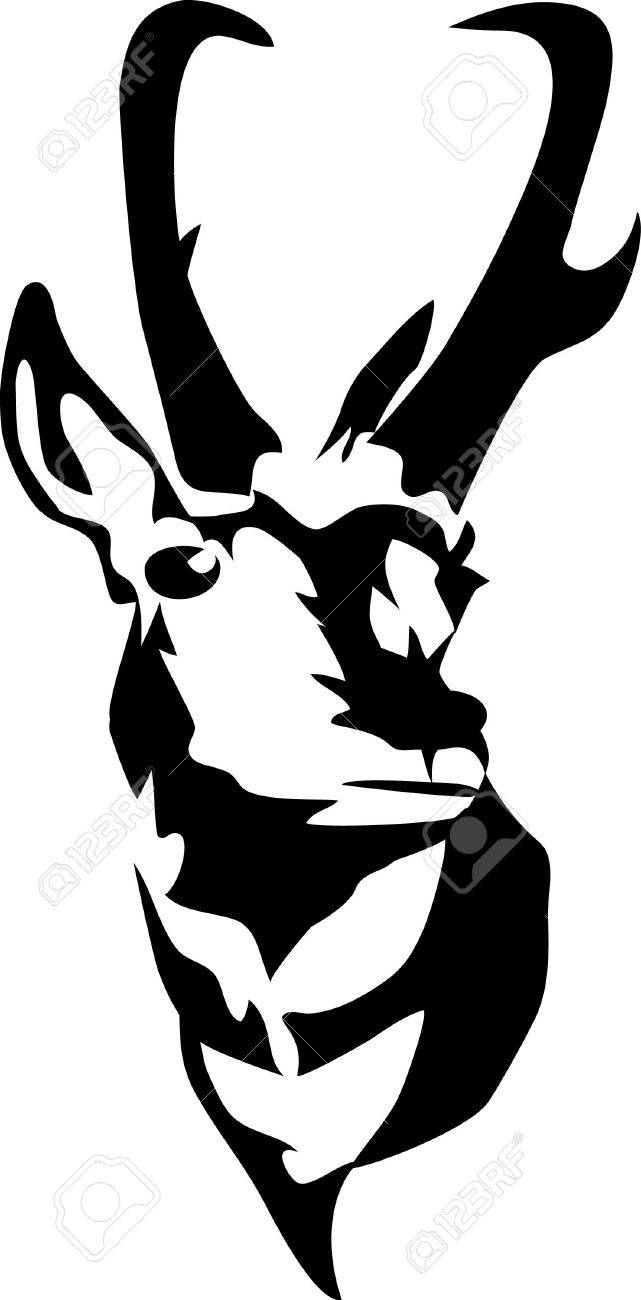head of pronghorn antelope royalty free cliparts vectors and stock rh 123rf com