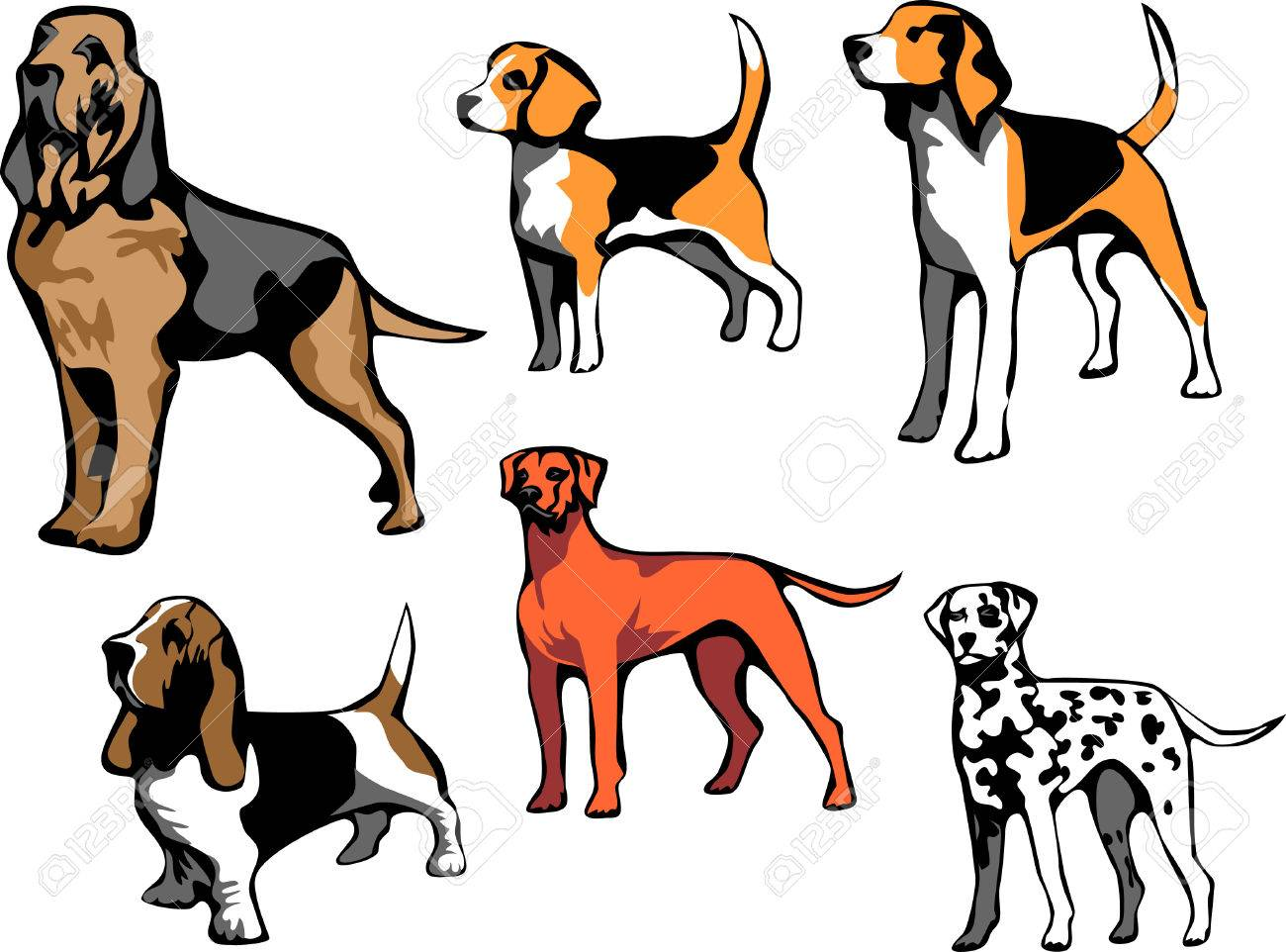 297 Bloodhound Dog Stock Vector Illustration And Royalty Free ...