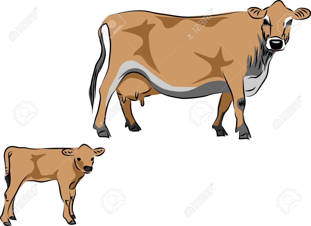 Jersey Cow With Calf Vector Illustration Royalty Free Cliparts ... for Cow And Calf Clipart  51ane