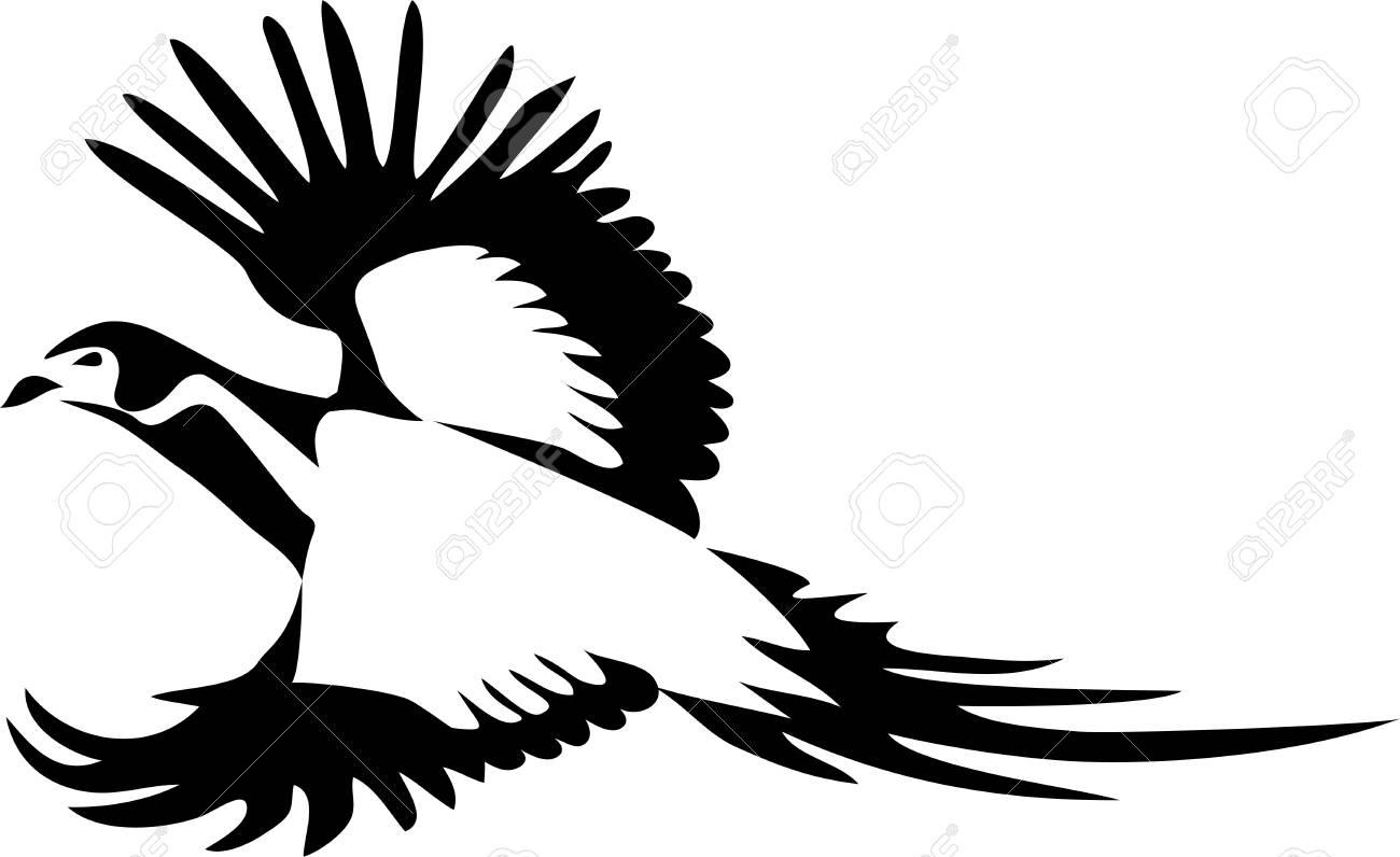 飛んでハイネックのキジのリングはベクトル イラストのイラスト素材