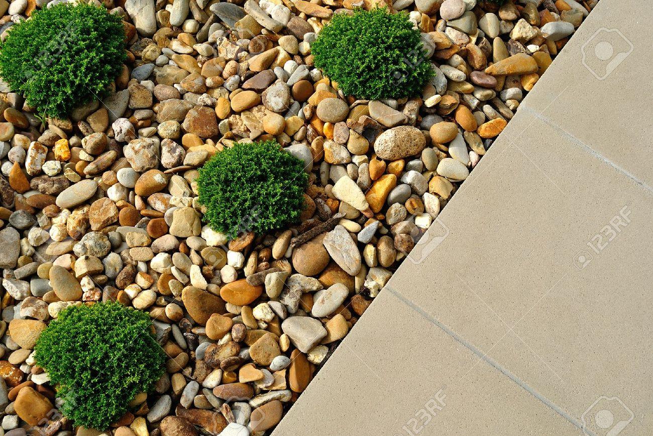 Amenagement Exterieur En Cailloux combinaisons d'aménagement paysager de plantes, cailloux et pavés