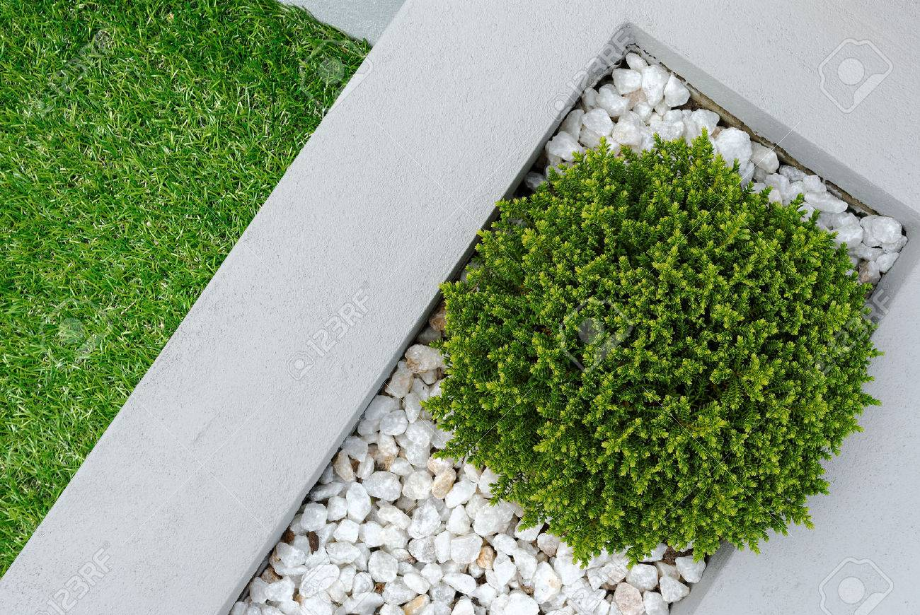 Landscaping combinations of plant and grass - 31536186