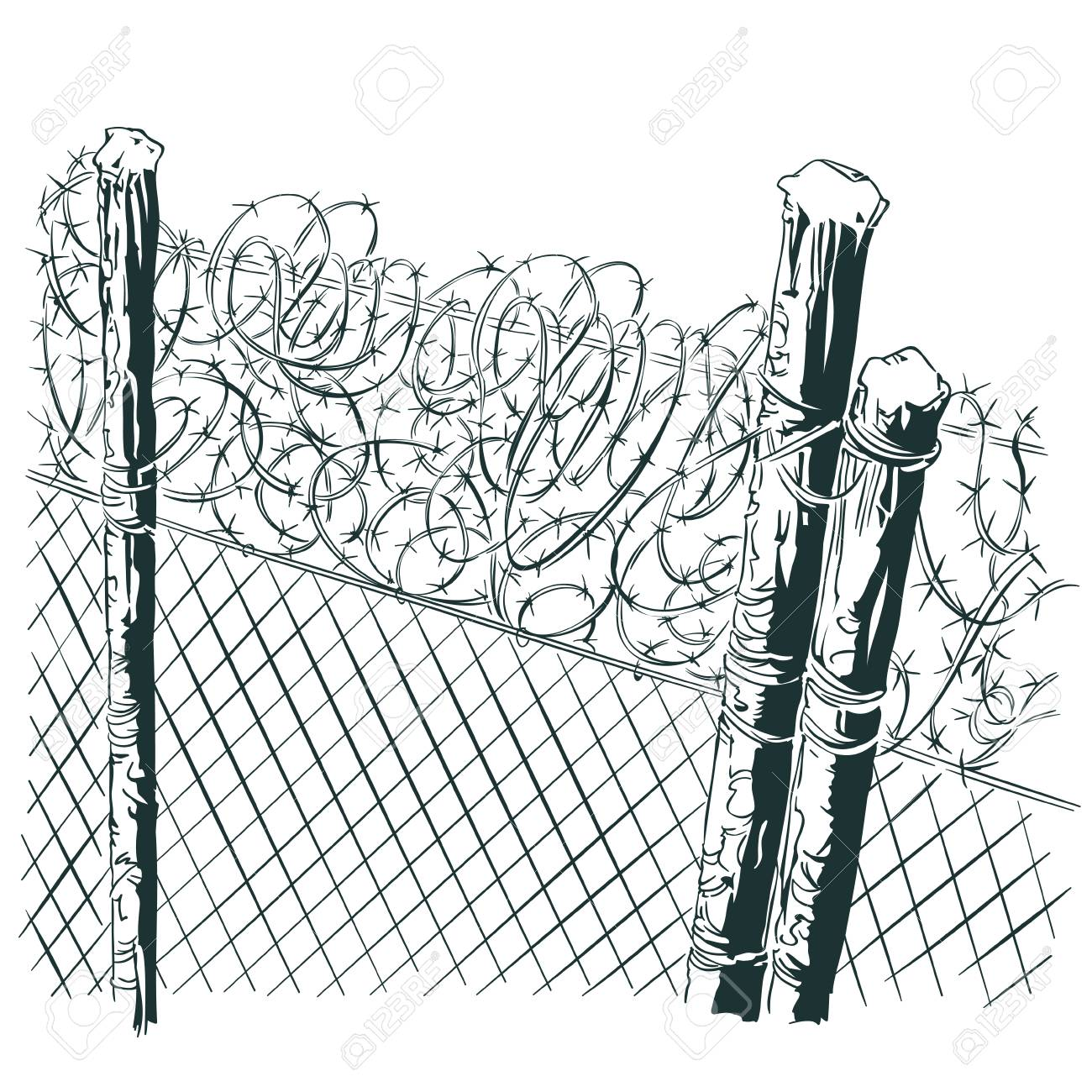 Funky Bob Wire Clip Art Photo - Everything You Need to Know About ...