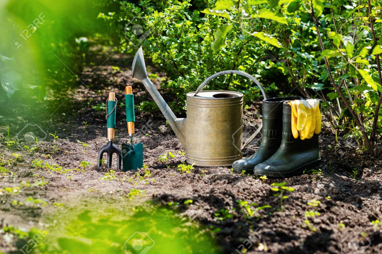 gardening tools in the garden watering can rubber boots garden tools rubber - Garden Watering Can