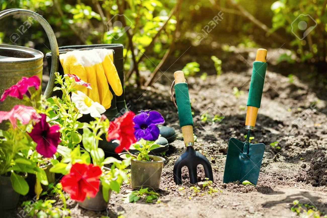Außergewöhnlich Gartengeräte Und Blumen Im Garten. Gießkanne, Gummistiefel, Blumen @TF_28