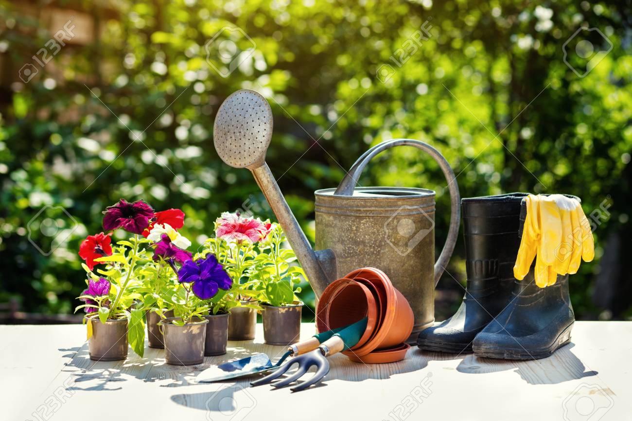Gartengeräte Und Blumen Auf Der Terrasse Im Garten Gießkanne